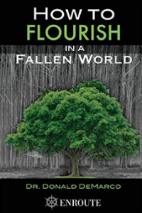 How to Flourish in a Fallen World book cover