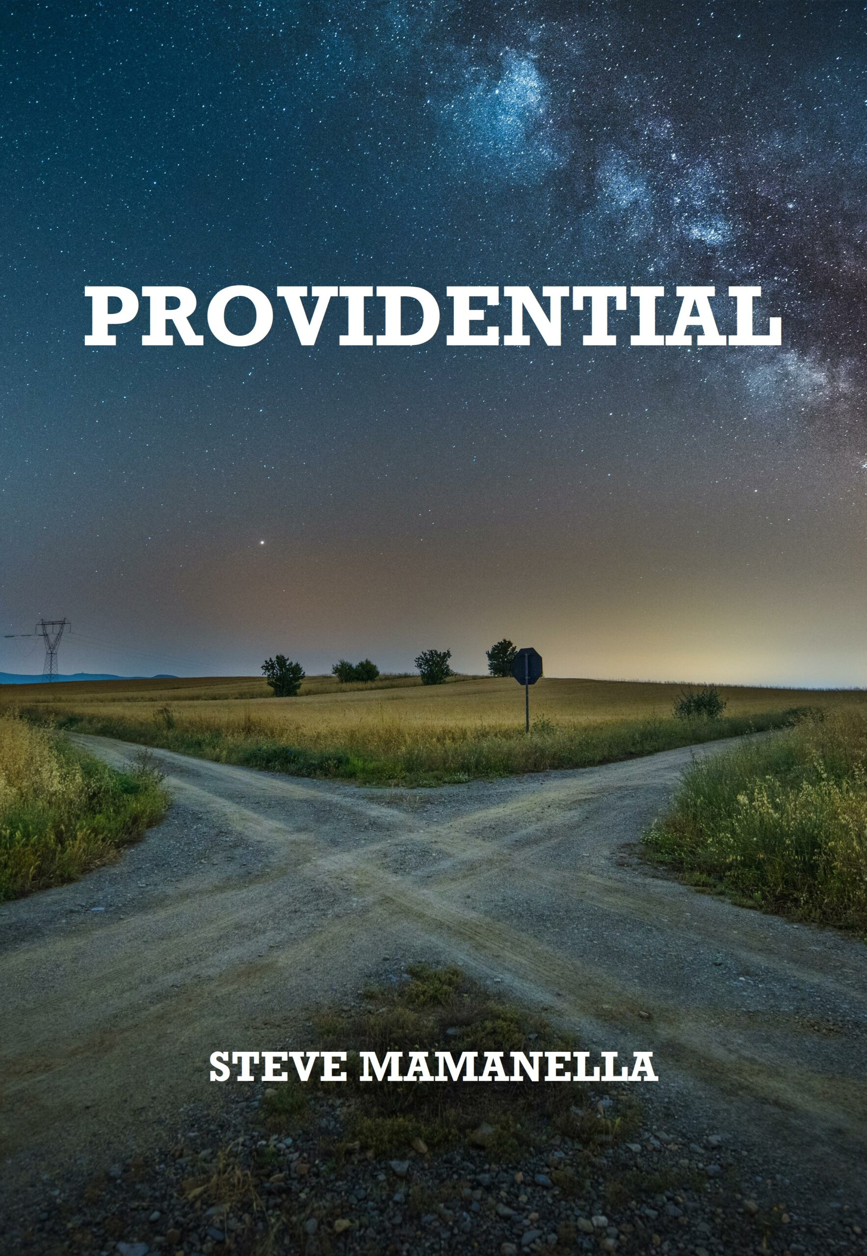 Providential by Steve Mamanella